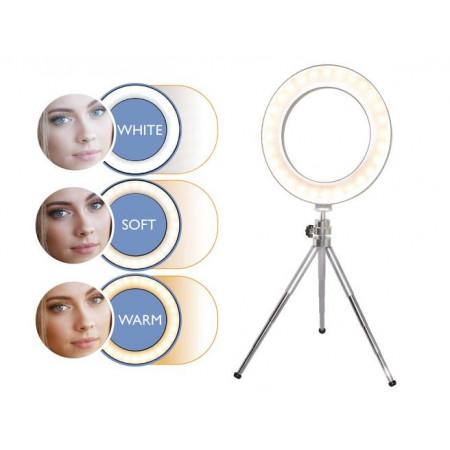 Ballonnen blauw 50x