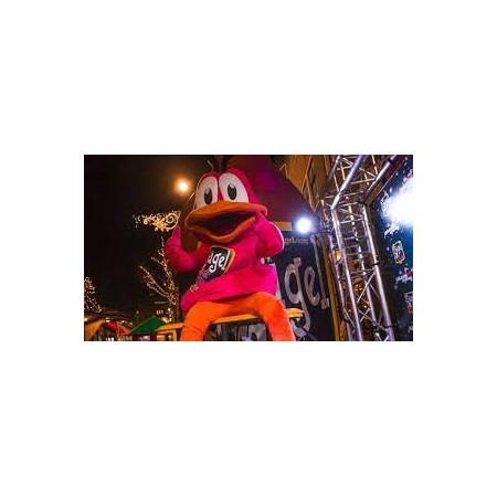 Thema ballonnen geslaagd