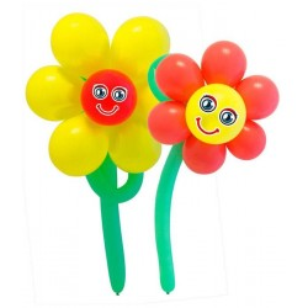 Ballonnenset bloemen 2 stuks