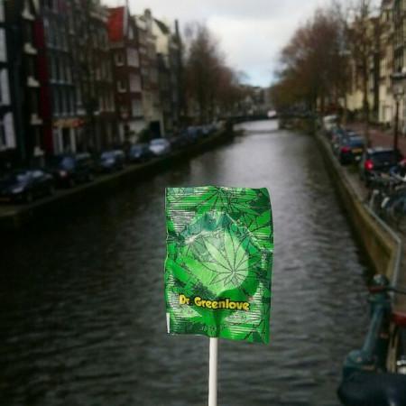 Zed Jawbreaker Firebal...