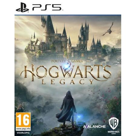Folie ballon zilver letter W met rietje
